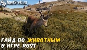 Гайд по животным в игре Rust