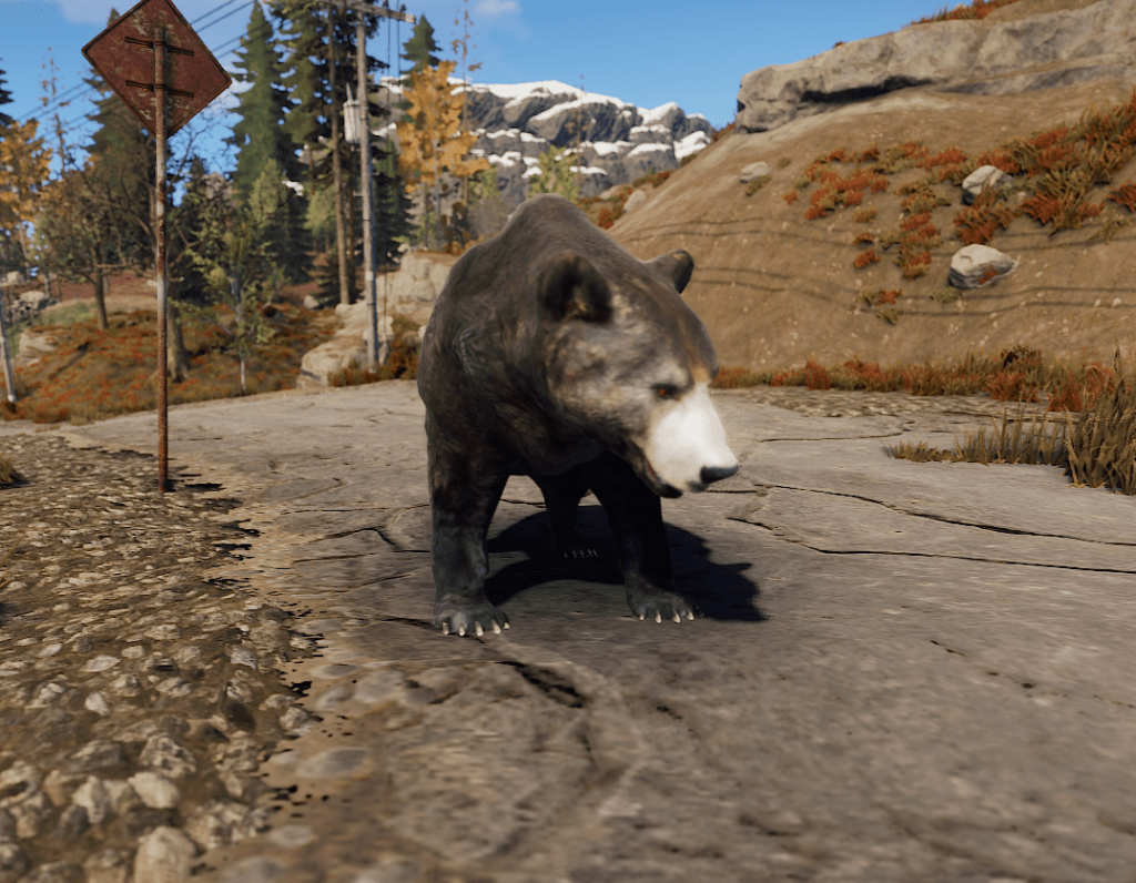 Медведь в Rust