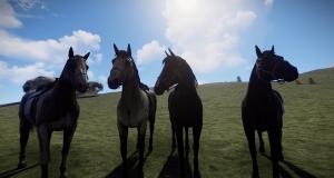 Аппалуза, Буланой, Гнедая, Пинто - лошади в Rust