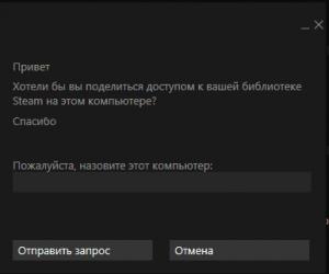 Второе окно при запросе игры в Steam