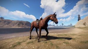 Ездовая лошадь в Rust