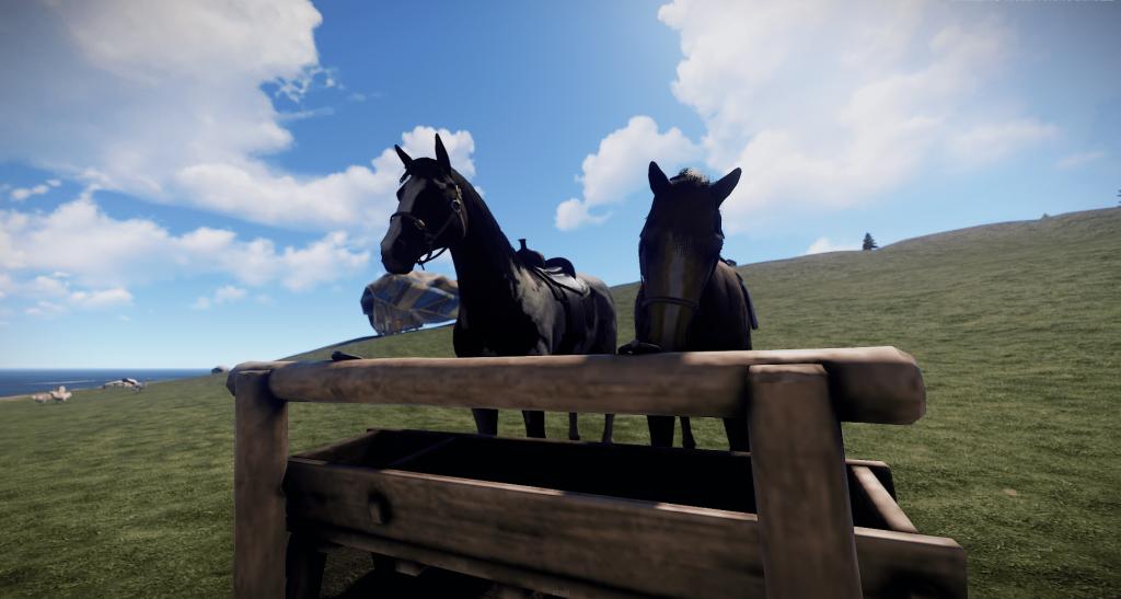 Каштан, пергий - лошади в Rust