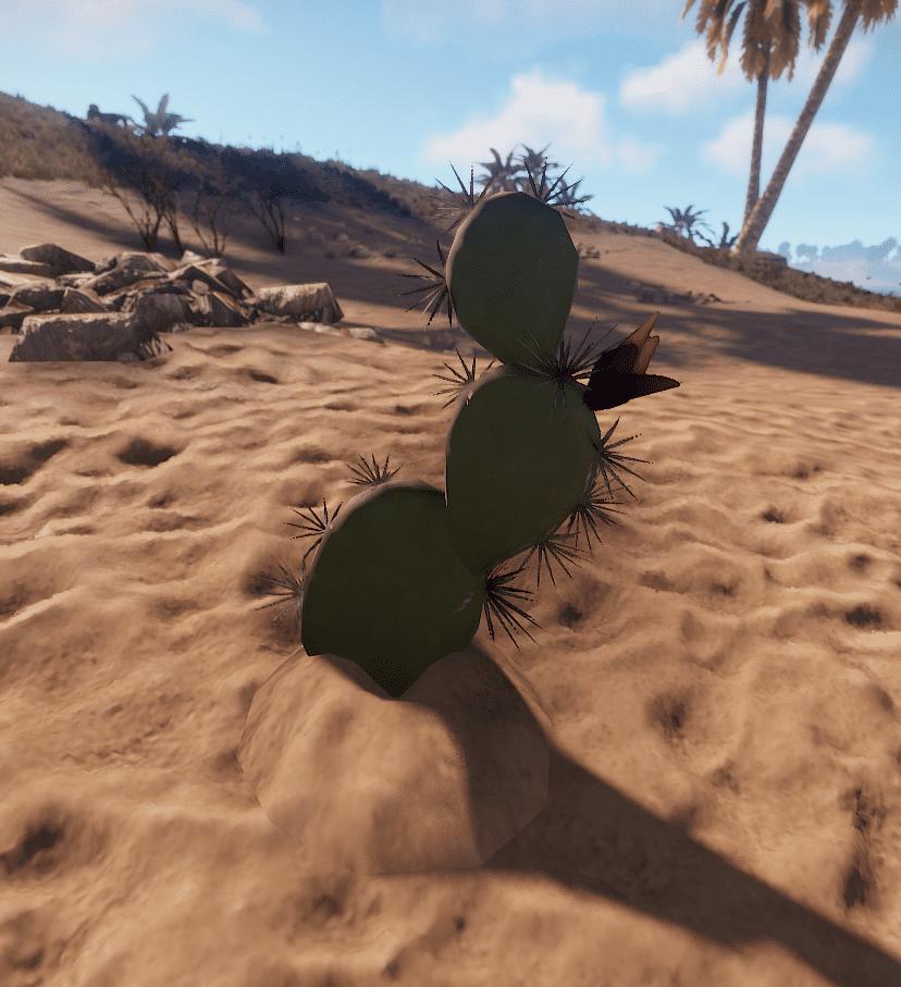 Короткий кактус в Rust